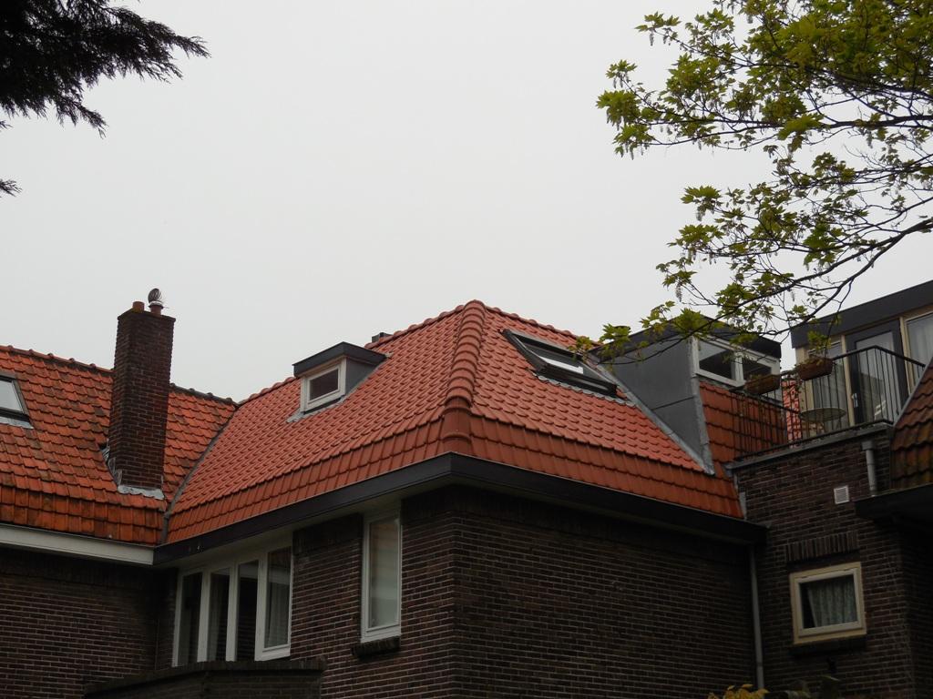 Binnenweg, Heemstede – Renovatie pannendak en vervangen bovendak